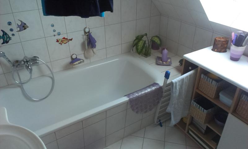 Wannen-und-WC-Tausch1